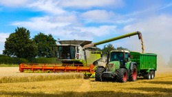 Colourful combine harvester working a wheat field with a tractor and trailer moving alongside. Grain from the elevator being uploaded. Dust cloud behind. Landscape image with space for copy. England.