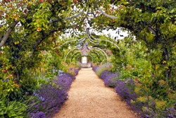 Colourful English summer flower garden with a path under archway