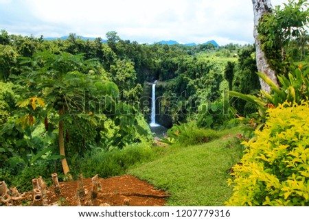 Colourful exotic garden with native vegetation and plants of Oceania and scenic lookout of Sopoaga Tropical Waterfall, Samoa, Upolu Island