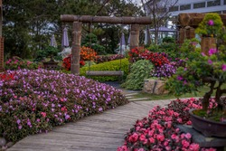 Colourful Flowerbeds  in an Attractive  Garden. Garden flowers. Flower garden. Lush landscaped garden with flowerbed and colorful plants. Park.Relaxation area in a garden. Beautiful flower.