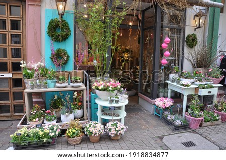 colourful flowers in front of a flower shop Foto stock ©