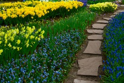 Colourful fresh Tulips Flowerbeds and Stone Path steps in an Spring Formal Garden