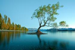 Colourful Lake Wanaka, New Zealand