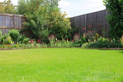 Colourful Pretty Flowers In A Home Garden Border Surrounded By A Wooden Fence And A Green Lawn.