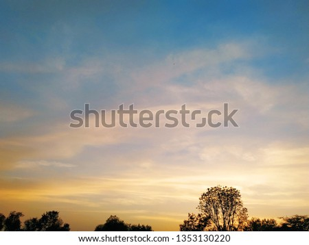 colourful skyline and trees