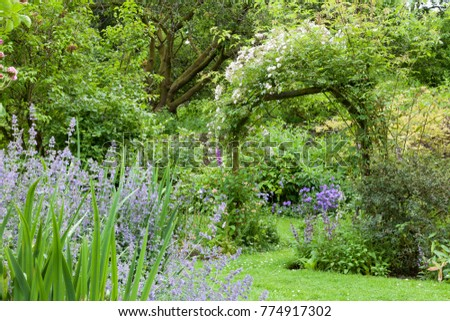 Colourful summer garden in bloom, with white flowering rose arch, leafy trees, evergreen shrubs. Green place to relax and rest .