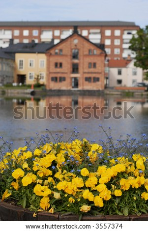 Colourful Swedish Houses by the River in Eskilstuna, Sweden - Focus on the Flowers