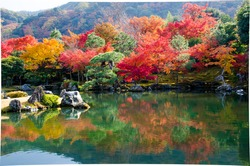 colourful trees with mirror lake in Autumn in Japan
