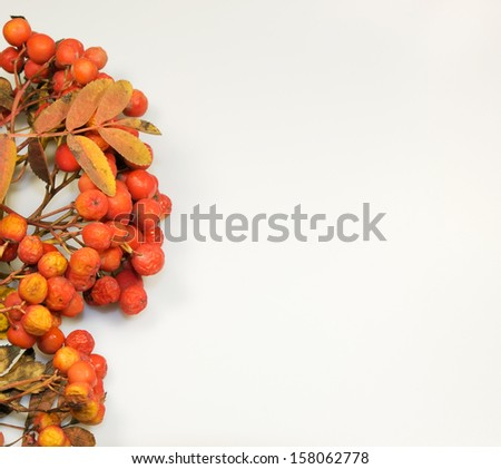 Colourfull autumn background made from leaves #158062778