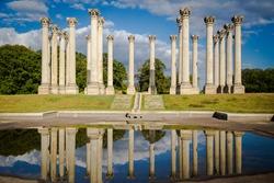 Columns at Washington DC Arboretum