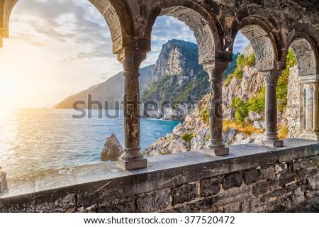 Shutterstock puzzlepix for Palma di san pietro