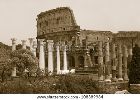 Columns of the Forum and Colosseum or Roman Coliseum, Rome, Italy