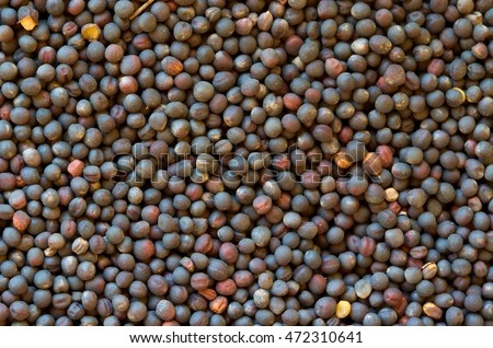 Colza seeds (rape plant seeds). Closeup. Background. Macro image can be used as background. Harvested colza seeds with dirt. #472310641