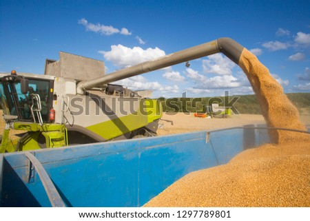 Combine harvester emptying harvested wheat grain into tractor trailer #1297789801