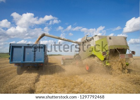 Combine harvester emptying harvested wheat grain into tractor trailer #1297792468