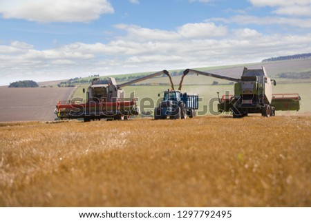Combine harvester emptying harvested wheat grain into tractor trailer #1297792495