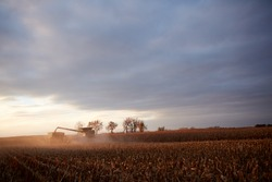 Combine harvester filling a tractor ad trailer with freshly harvested maize in a scenic moody wide angle landscape