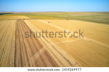 combine harvester harvests on the field