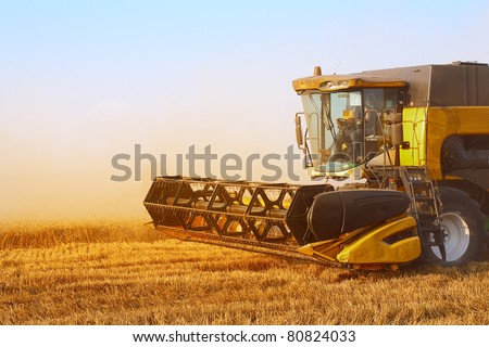 combine harvester in field wheat - stock photo