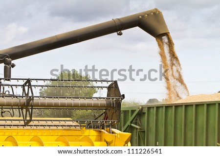 Combine harvester offloading grain into a wagon