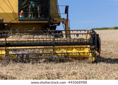 Combine harvester on a wheat field. #445068988