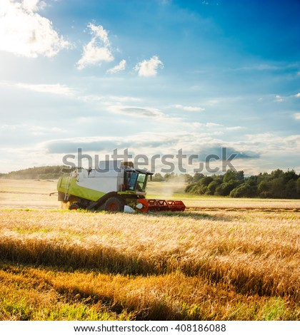 Combine Harvester on a Wheat Field. Agriculture. #408186088