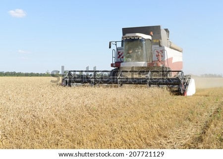 combine harvester on a wheat field with a blue sky #207721129