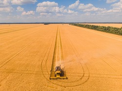 Combine harvester on the field of wheat. Perfect summer view from flying drone of harvesting wheat on sunset. Picturesque rural scene in Ukraine, Europe.