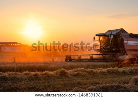 Combine harvester working in field at the sunset. Rural scenery. Industrial landscape. Harvesting time.