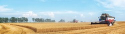 Combine harvester working on the wheat field. Panoramic view.