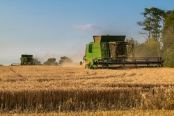 Combine harvesters working on the field , collecting harvest is abundant.