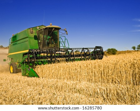 Combine harvesting a wheat field