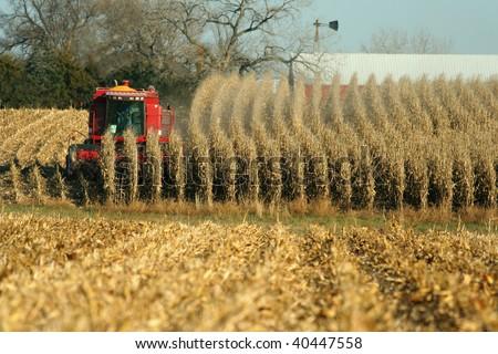 combine harvesting corn, rural Nebraska