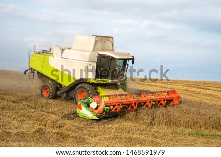 Combine harvesting wheat. Agricultural industry. Cereal harvest time.