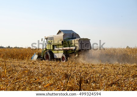 Combine harvests on a corn field. Tractor in the meadow in sunny summer or autumn day. Countryside agriculture industry. Harvesting of bean field with combine. Harvester working on a wheat field. #499324594