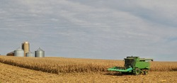Combine in corn field with grain bins in the background