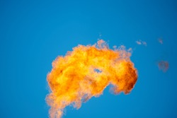 Combustion of associated petroleum gas