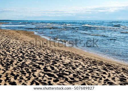 comfortable beach of the baltic sea with rocks and green vegetation in summer #507689827
