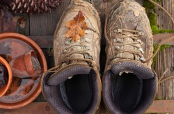 Comfortable old dirty walking boots, next to plant pots full of water and an oak leaf on the boots.