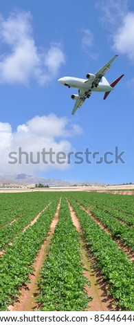 Commercial Passenger Airplane Flying over Rural Agriculture Farmland Crop on Sunny Blue Sky Day