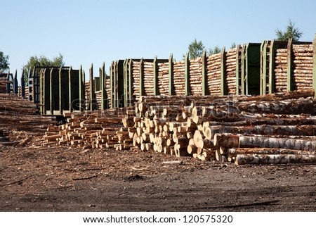 Commodity cars transporting wood stand in a warehouse