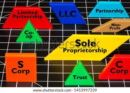 Common business entities and ventures as simple colorful shapes, LLC, Partnerships, S corp, trust, non-profit, sole proprietorship. #1453997339