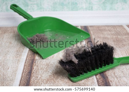 common house dust on a floor, dustpan and brush set