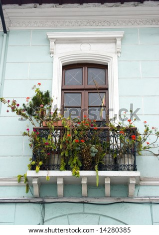 common window balcony with flowers architecture quito ecuador historic district