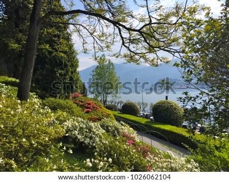 Como lake viewing from Villa Carlotta's garden during Spring season, Tremezzo town, Como Province,  Lombardy region, Italy