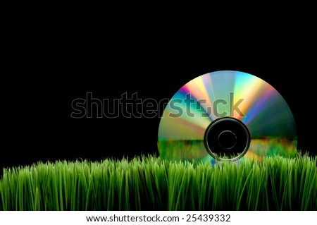 Compact computer data disk on green grass with a black background