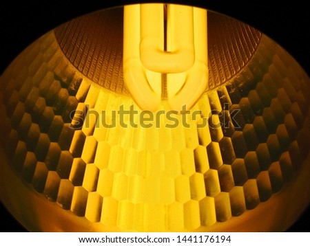 compact fluorescent lamps (CFL) type is warmwhite in the light bulb under ceiling in the night use for energy saving technology concept, closeup shot photo.