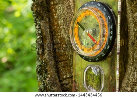 compass is hanging on the trunk of a forest tree against a blurred background of green leaves; its glass reflects the surrounding nature concept of sports orientation and hiking #1443434456