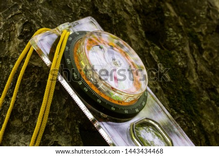 compass lies on a tree its glass glistens reflecting the nature of the concept of sports orientation and hiking #1443434468