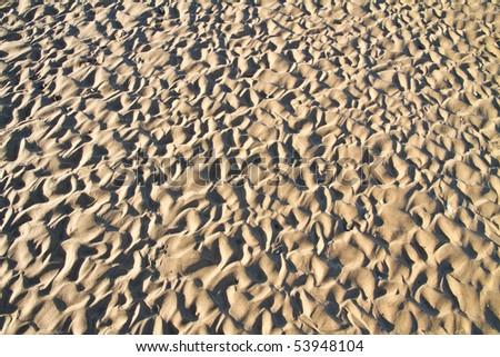 Complex beach sand ripple pattern at sunset